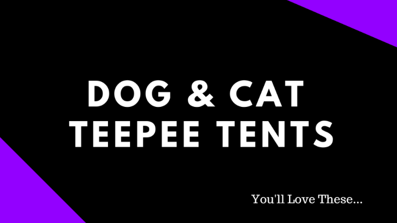 The Best Pet Tents & Why…