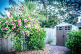 Duramax Metal & Plastic Garden Shed Reviews (Strong Maintenance-Free Sheds)